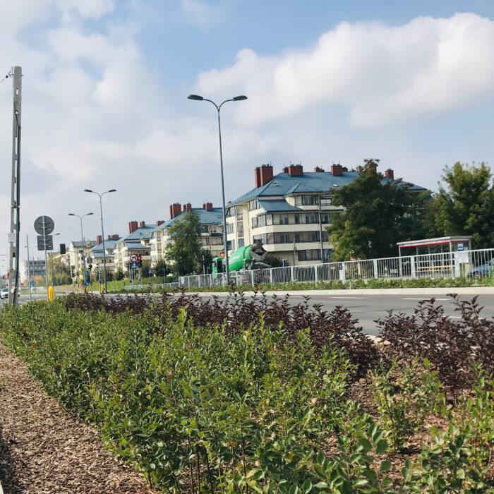 Łodygowa (1)