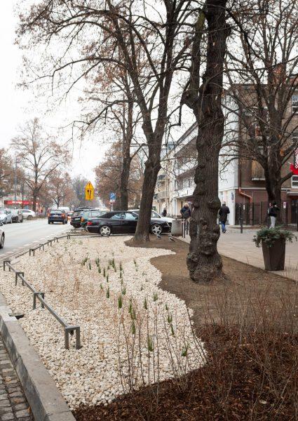 Ul. Francuska w Warszawie